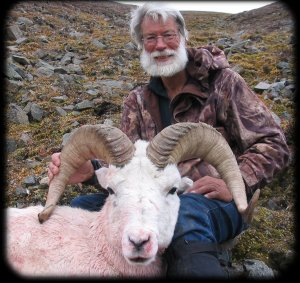 Yukon Dall Sheep at Dickson Outfitters
